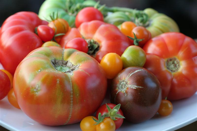 Heirloom Tomatoes 1lb Mixed Sizes And Varieties Market Wagon