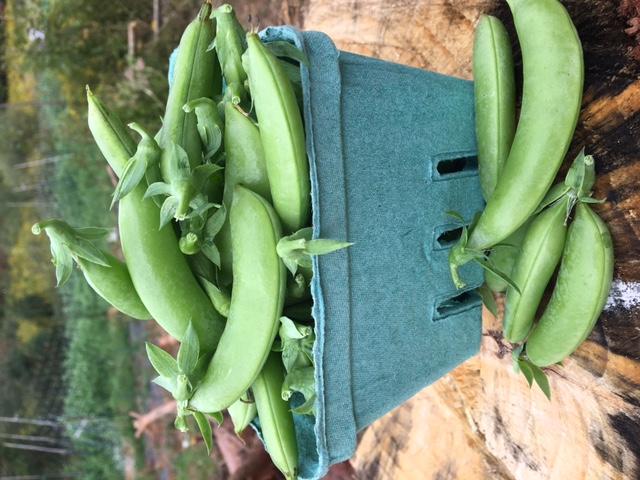 Organic Sugar Snap Peas - Quart | Market Wagon | Online