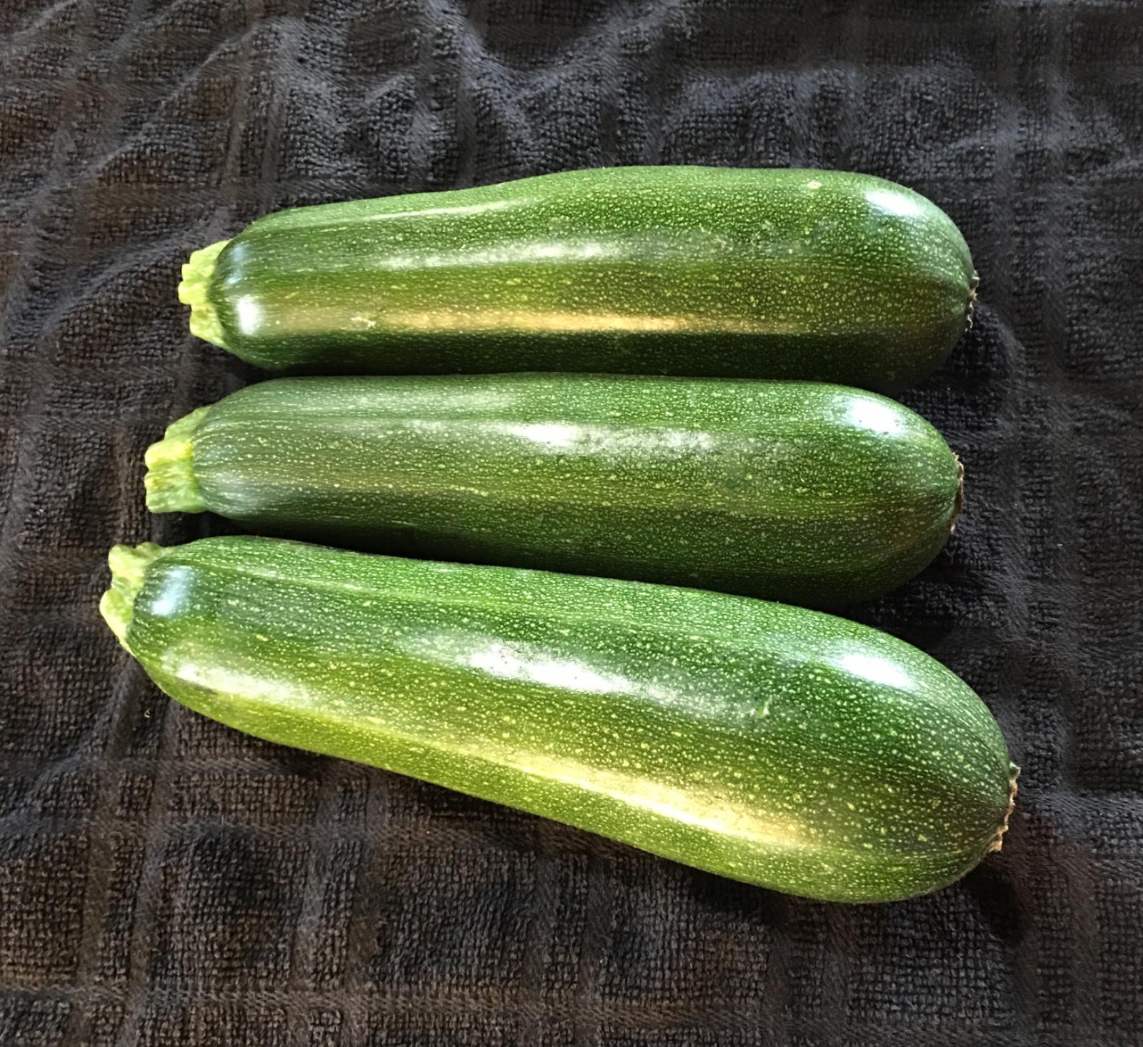 zucchini--3