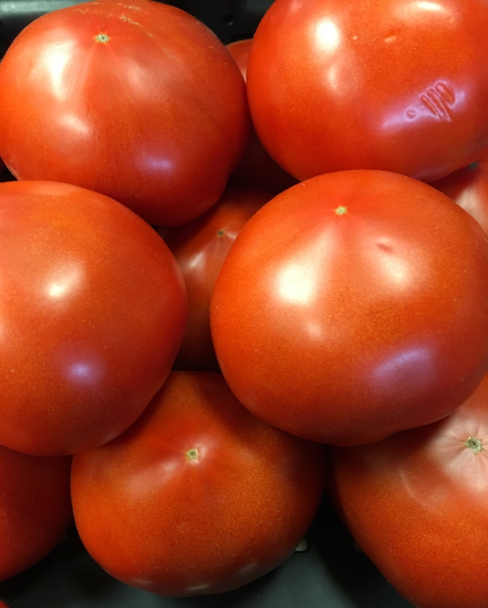 tomato-slicers-1-pound
