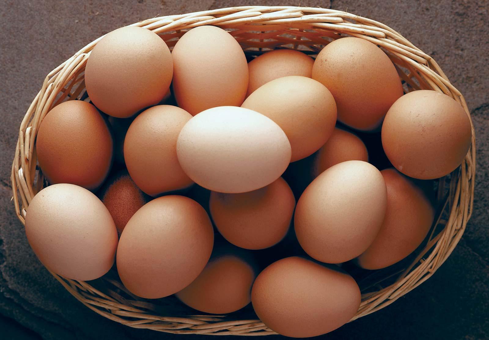 1-dz-small-eggs-free-range-chickens
