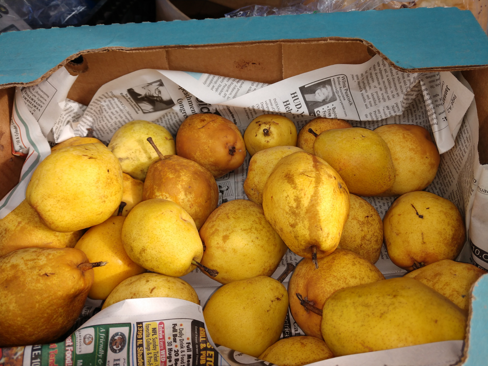 fresh-winter-pears-2nds-3-lbs