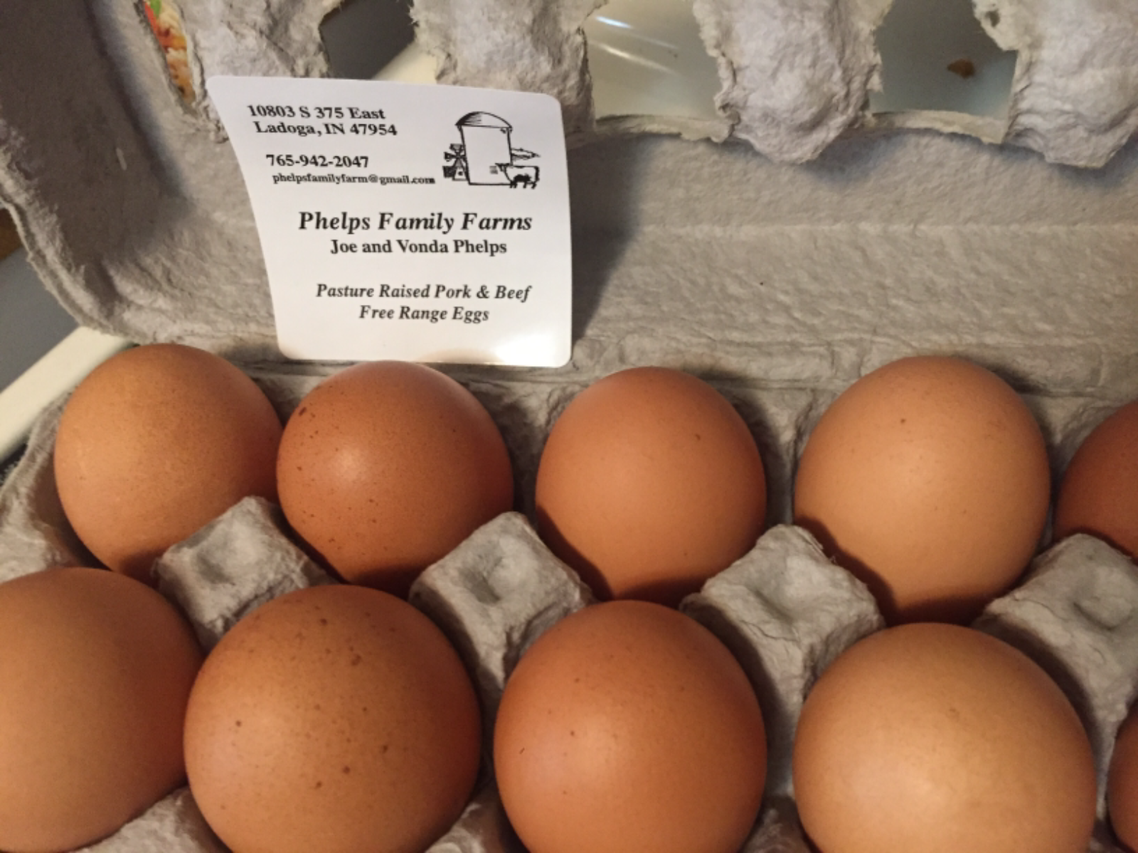 eggs-medium-to-large-free-range