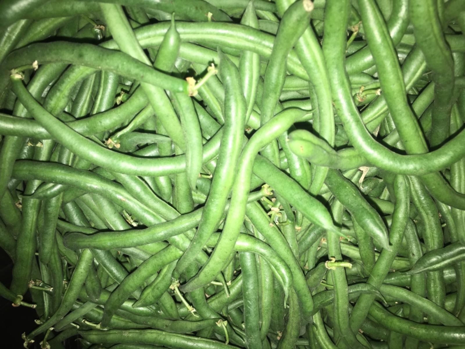 green-beans--3