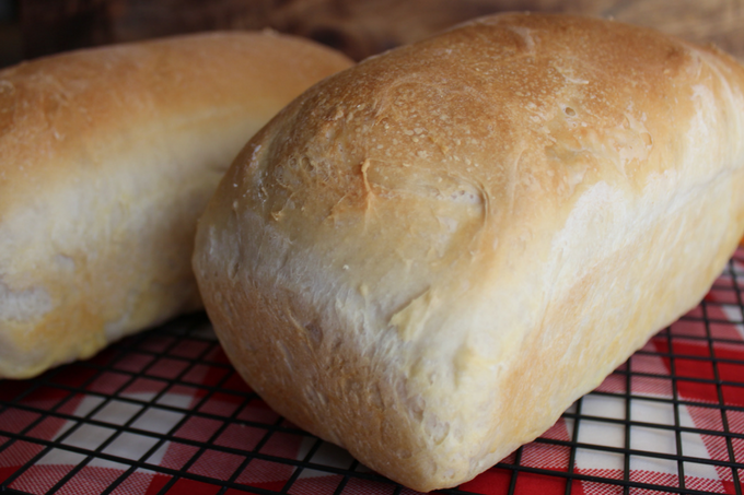 county-white-bread