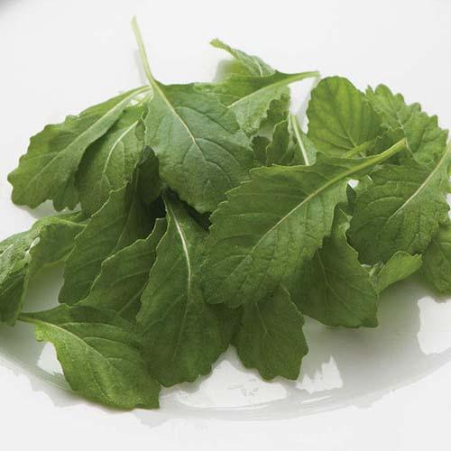 limited-offer-wasabi-arugula-25-oz