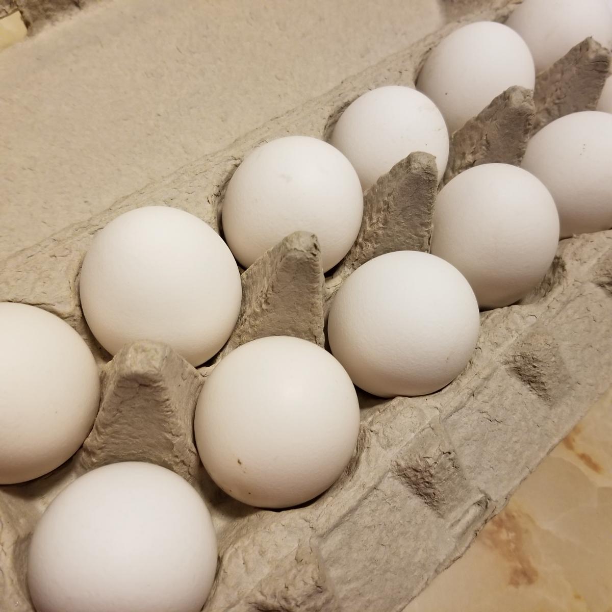 free-range-1-dozen-white-eggs