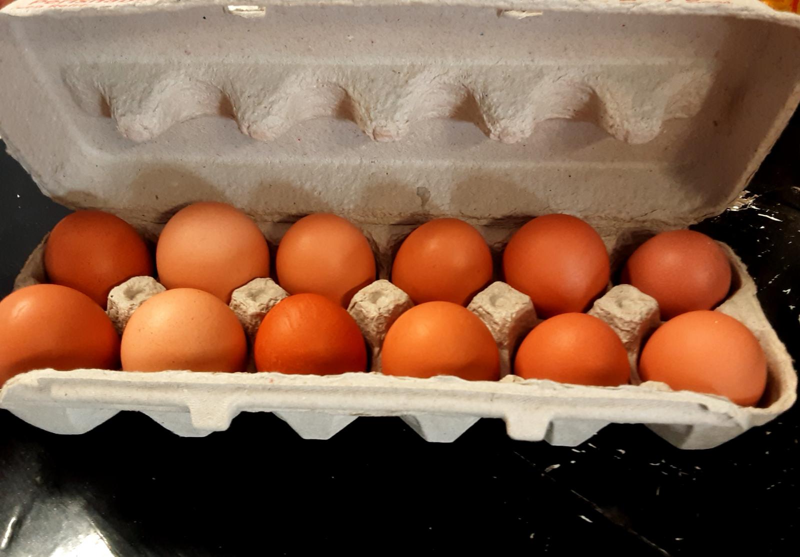 farm-fresh-eggs-13