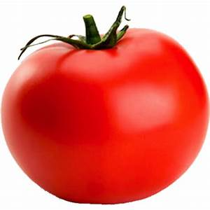 tomatoes-hoop-house-sold-by-the-pound